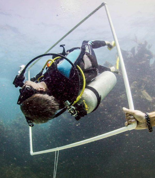 workshop buoyancy2 (1)